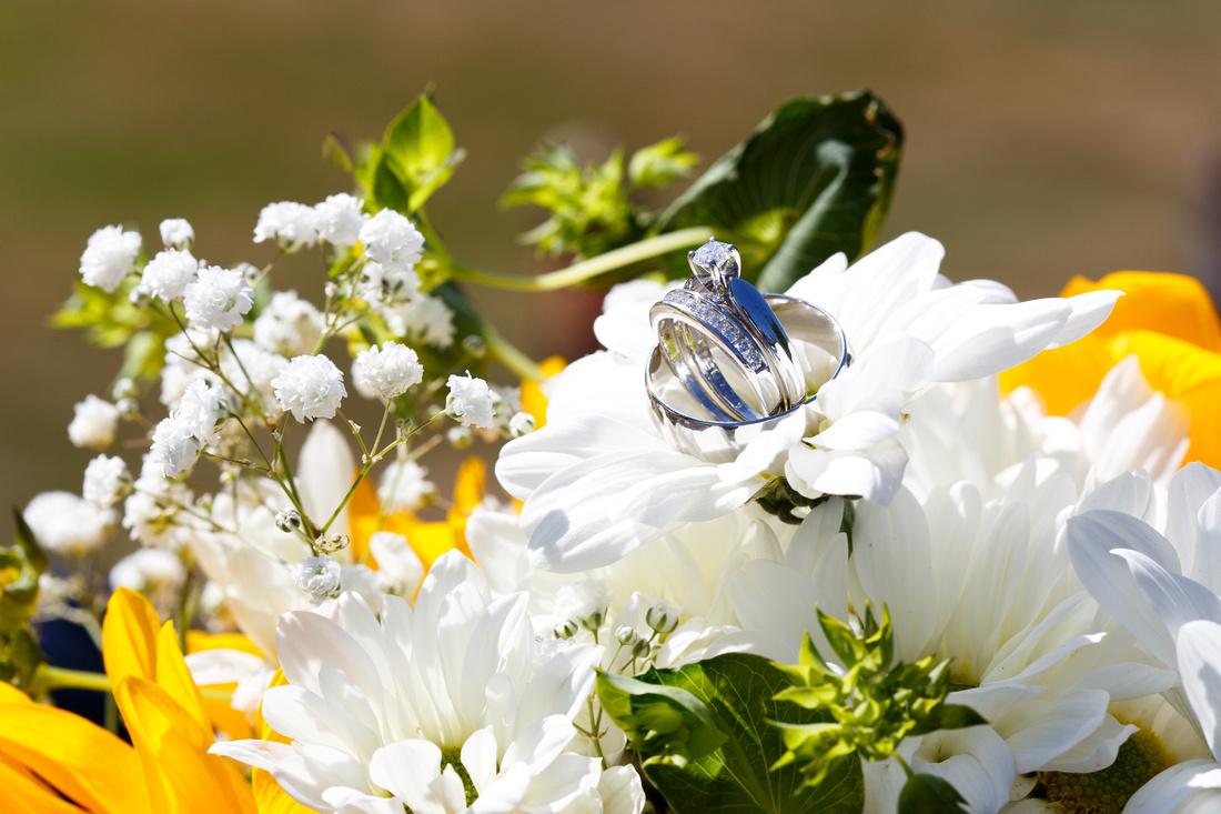 Wedding Rings. Barrie Photographer